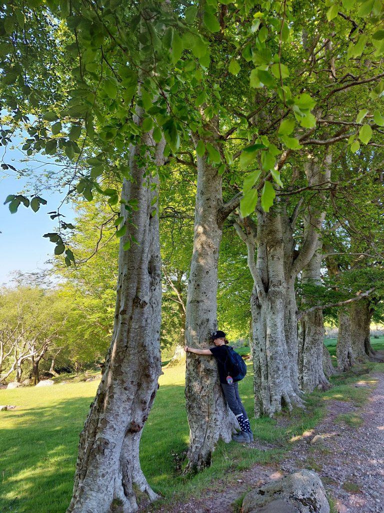 girl hugging tree in woodlands